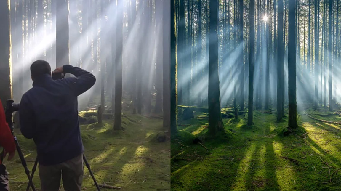 شاهد كيف ساهم الضباب في التقاط صورة فازت بجائزة عالمية