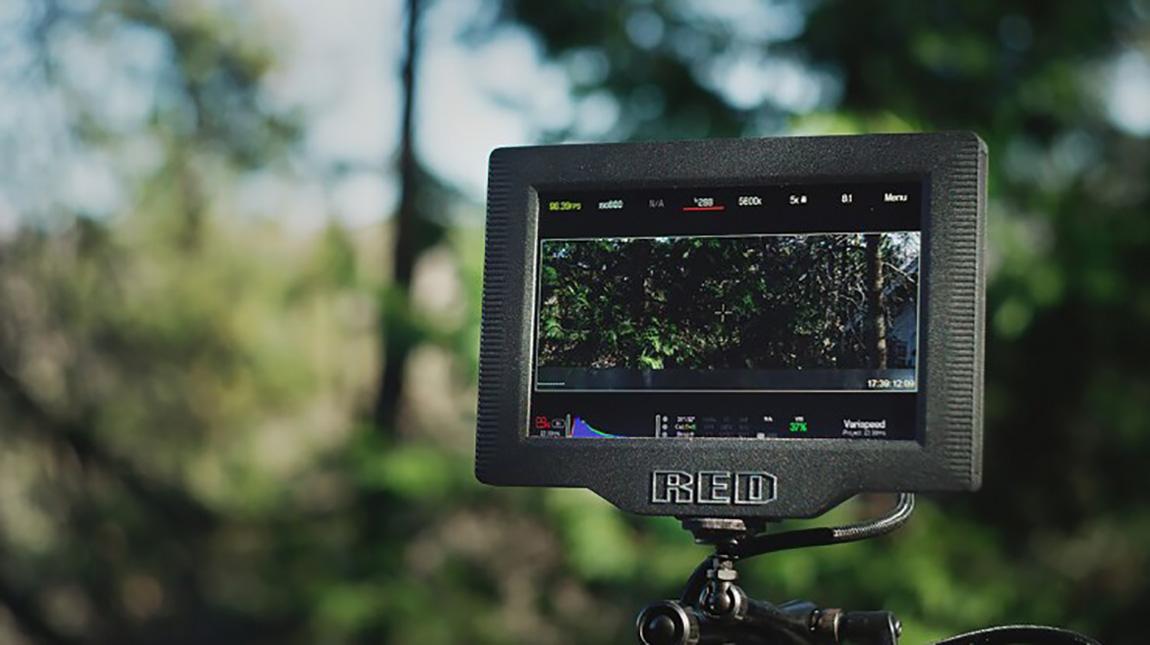 شاشة DSMC2 Ultra-Brite من ريد لمراقبة وتسجيل الفيديو