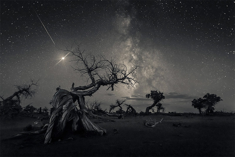 الصور الفائزة في مسابقة المصور الفلكي لعام 2019