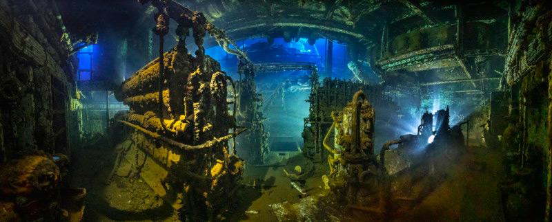 الصور الفائزة في مسابقة Underwater Photographer of the Year 2020